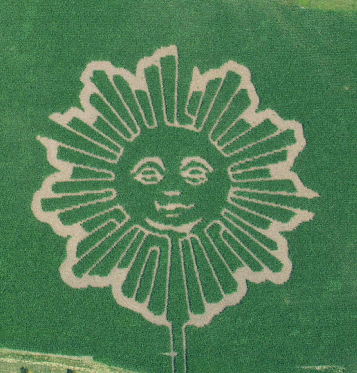 2013 5-Acre Corn Maze - CBS Sunday Morning Show Logo