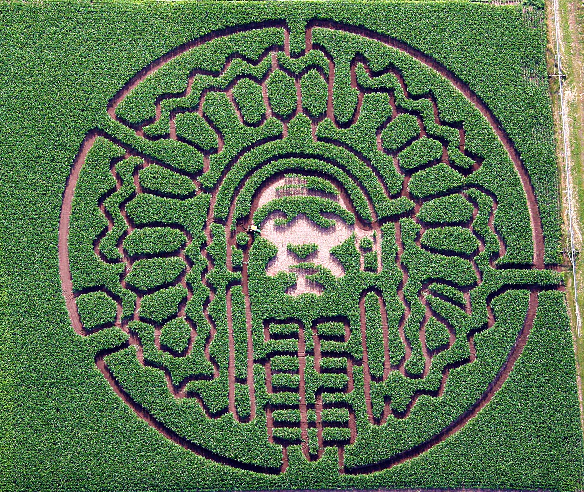 2007 5-Acre Corn Maze - University of Illinois, Chief Illiniwek