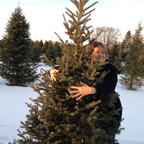 Choose and Cut Christmas Trees at Richardson Adventure Farm in ...