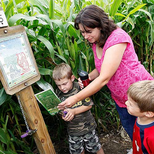 The World's Largest Corn Maze in Northern Illinois