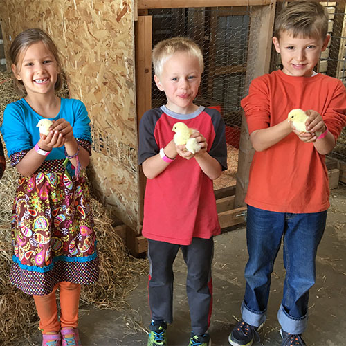 Kids love feeding and greeting our goats, ponies, and more in our petting zoo!